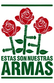 Estas son nuestras armas
